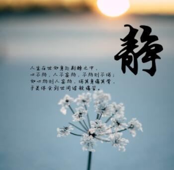 十条经典禅语摘抄,请相信善良一定会有回报