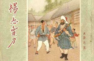《水浒传·杨志卖刀》读书笔记摘抄及感悟1000字