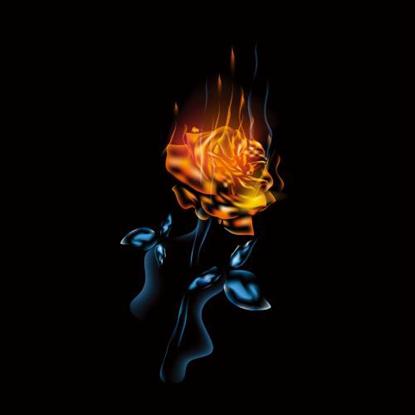 《妈妈是心中燃烧的一团火》内容简介读书笔记及读者点评