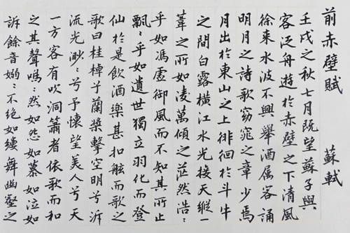 《前赤壁赋》作品简介段落摘抄及读书笔记心得