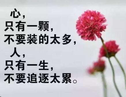 佛教经典语录精选摘抄9条句句经典