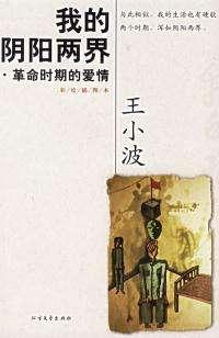 王小波《我的阴阳两界》读书笔记书摘内容简介及几经典语录