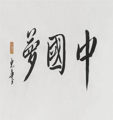 《我的中国梦》作品推荐内容简介及经典段落摘抄