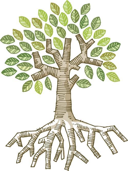 《玫瑰树根》读书笔记主要内容讲解及心得体会