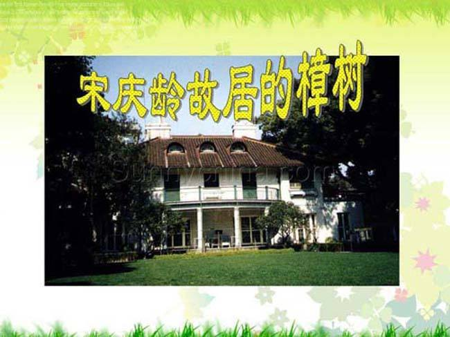 宋庆龄故居的樟树